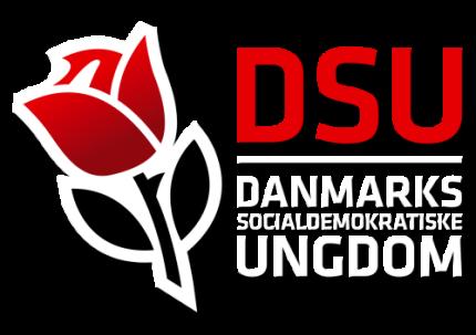 DSU'ere marcherede også uniformsklædte rundt i 1930'erne, skriver historiker Martin Kryhl Jensen.